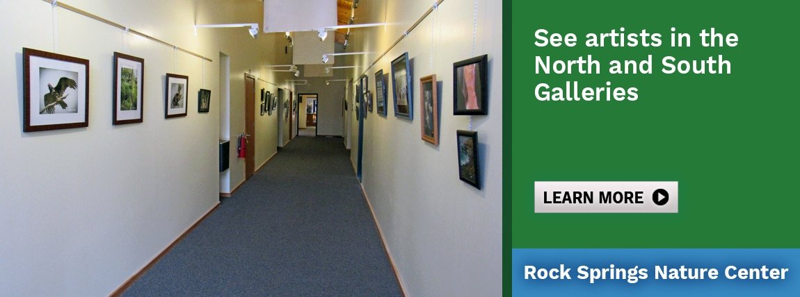 See artists in the North and South Galleries at Rock Springs Nature Center