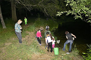 children and adults searching the riverside at night