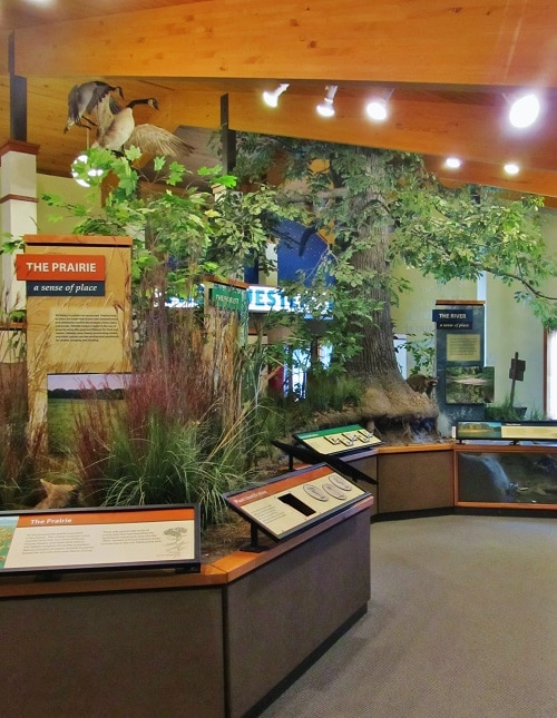 The Ecocenter at Rock Springs Nature Center