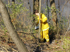Prescribed-Fire-1