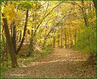 Sand Creek Trail