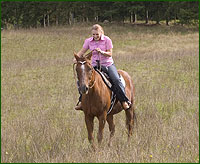 SC-Horse-Trail