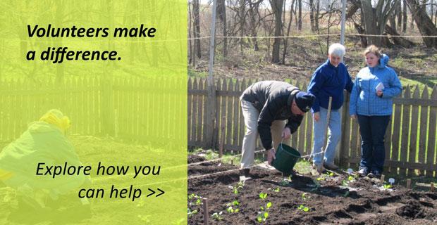 Volunteer---Spring-2017