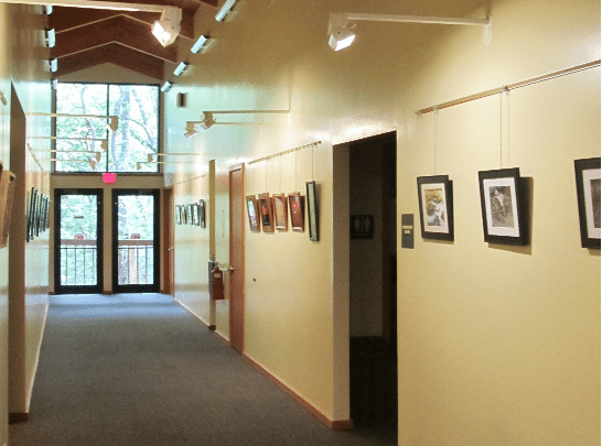 Decatur Camera Club Exhibit