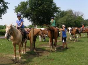 horses-xtreme-camp