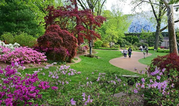 Trip to Missouri Botanical Garden in St. Louis