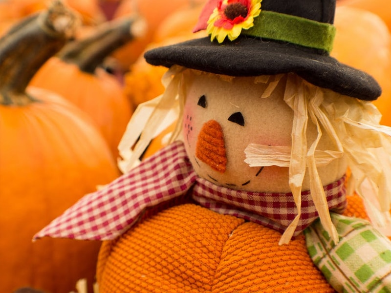 Preschool Peepers: Silly Scarecrows