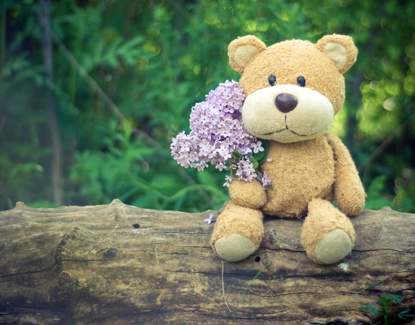 Teddy Bear Walk and Campfire Stories