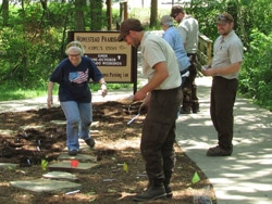 volunteers working to replant flower bed